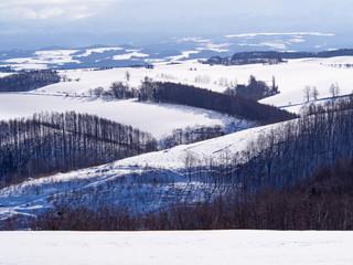 丘上からの景色~真冬~