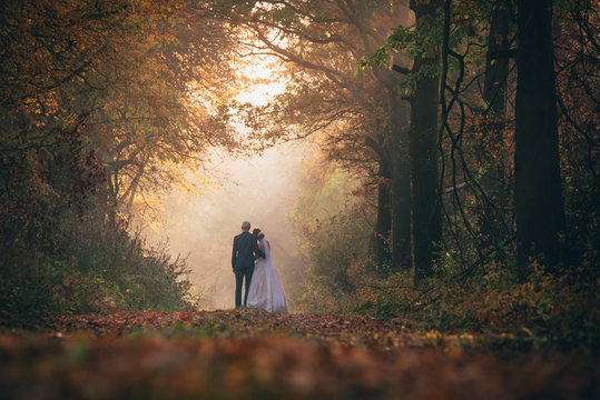 Wedding couple together in autumn forest
