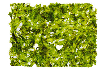 dried nori seaweed laminaria sheet, isolated on white