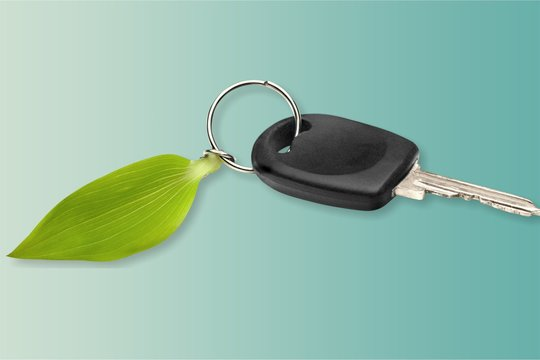 Car key with green leaf