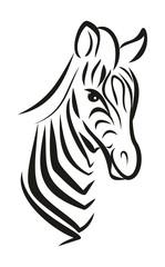 Набросок  африканской зебры.