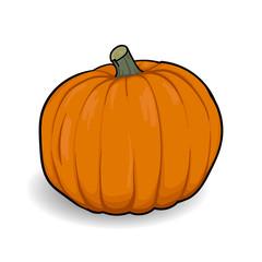 orange pumpkin cartoon