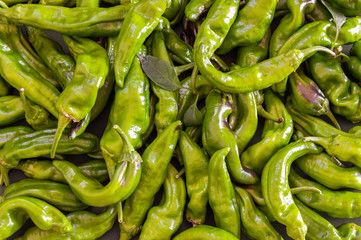 Background full of organic green peppers, full frame. Big group of fresh and ripe peppers, close up with details. Spanish peppers.