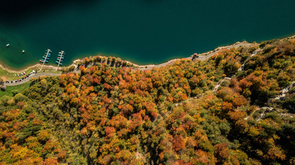Top down view drone photography of autumn forest at lakeside lake shore water klöntalersee glarus Switzerland Schweiz
