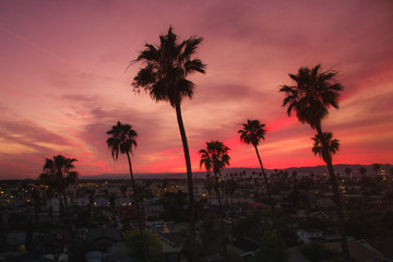 Koreatown, Los Angeles at sunset