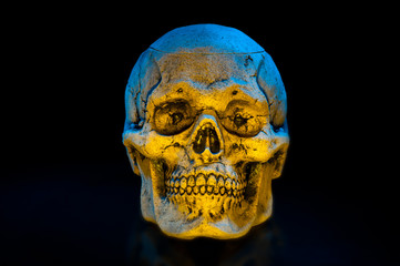 Ceramic skulls on black background. Halloween decor.