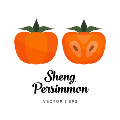 Persimmon vector editable illustration, Sheng type. Kaki drawn in flat simple style.