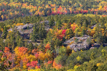Autumn Colors at Sugarloaf Mountain in Marquette Michigan