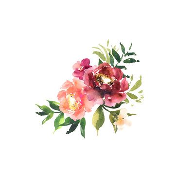 Watercolor floral set. Bouquet with red orange beautiful flowers