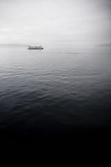 ferry in salish sea