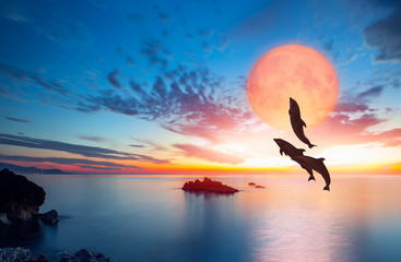 """Silhoutte of beautiful dolphin jumping up from the sea at sunset with super moon """"Elements of this image furnished by NASA """""""