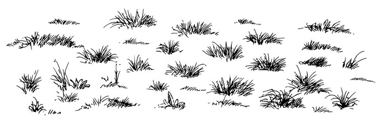 grass, hand drawn set.