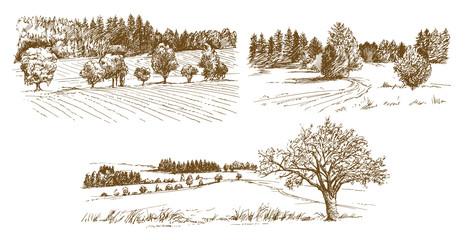 Foto auf Acrylglas Weiß Rural landscape. Hand drawn set.