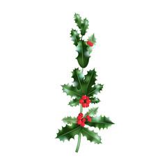 Green holly branch