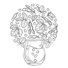 Vector outline glass of Soy milk and bunch of Soybean pod with beans and ornate leaf in black isolated on white background. Legume plant Soya in contour for vegetarian food drawing or coloring book.
