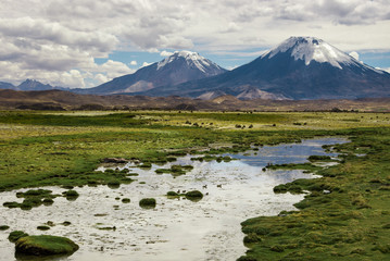 Lauca National Park with Parinacota volcano in the background, Chile