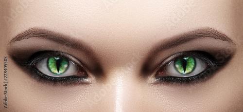Close-up of Woman Eyes. Halloween Makeup. Cat Eye Lens. Fashion Catwalk Black Make-Up. Luminous Green Cats Eyes