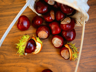 Fresh Chestnuts in the Basket, View from Above, Autumn Harvest