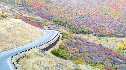 a small empty road winding through the Utah countryside filled with vivid autumn colors