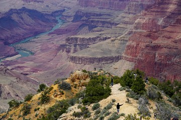 Grand Canyon National Park, Arizona, USA: People taking selfies at the edge of the Grand Canyon, near the Desert View area of the South Rim. The Colorado River flows in the background.