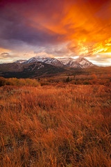 Canvas Prints Magenta Golden fall sunset in the Wasatch Back, Utah, USA.
