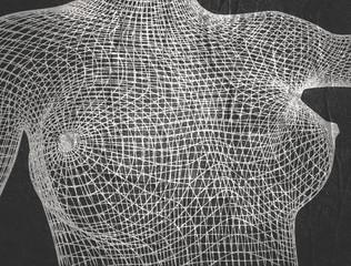 Polygonal female breast. Wire frame style design.