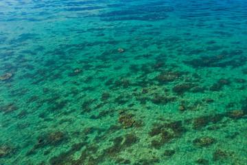 Crystal clear water in ishigaki island