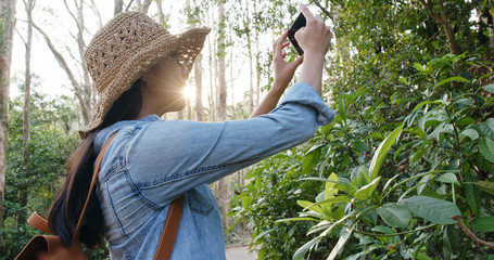 Woman take photo on cellphone under sunlight in forest