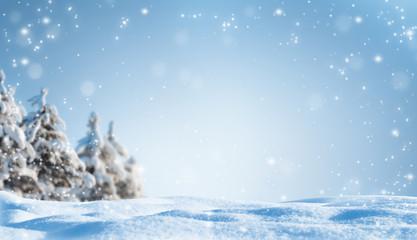 winterwald leerer hintergrund