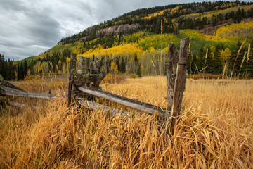 Morning autumn meadow tall grass fence