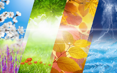 Four seasons of year collage. Vibrant colorful images of different time of year - spring, summer, fall, winter Fototapete