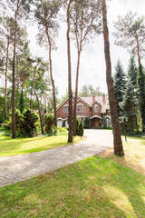 A paved road through trees, evergreens and grass leading to a classic English house in the suburbs.