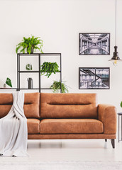 Grey blanket on brown leather sofa in bright modern apartment with industrial posters on the wall and plants on the shelf