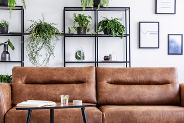 Closeup of brow leather sofa in luxury living room. Water, book and candle on the table next to it, pots with green plant behind it