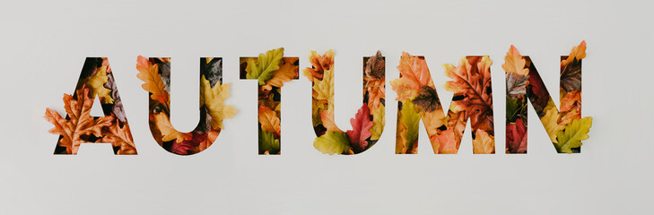 Word Autumn with colorful leaves. Creative nature concept. Minimal autumn flat lay background. Top view.