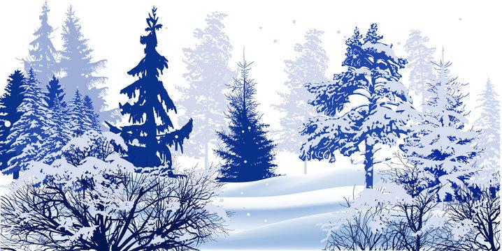 trees in snow winter blue illustration