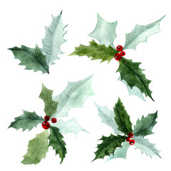 Christmas watercolor set with Holly. Branches of trees. Holly sprigs with red berries.