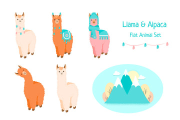 Cute llama or alpaca flat characters set for nursery design, poster, banner, logo, icon, greeting card, sticker. Baby llama or little alpaca for wool producer. Cartoon wild animal in scarf and pompons