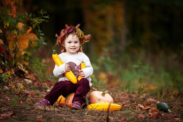 Cute little girl playing with vegetable marrow in autumn park. Autumn activities for children. Halloween and Thanksgiving time fun for family. Copy space