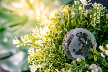 World globe cystal glass on green leaves bush. Environmental conservation. World environment day. Global business for sustainable development. Nature and ecology concept.