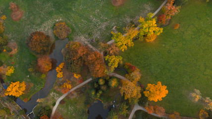 Aerial view of autumn foliage forest.