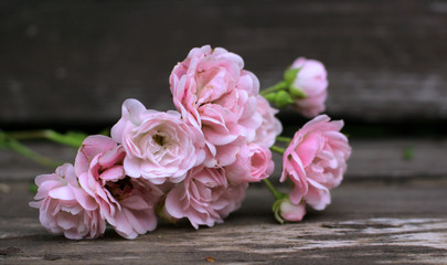 Styled stock photo. Spring feminine scene, floral composition. Decorative banner made of beautiful pink roses flowers on a wooden table .Blurred background. Concept spring flowers.