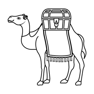cute camel desert animal
