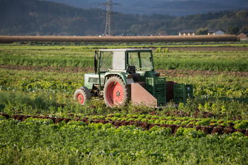 Traktor auf Acker, Landwirtschaft