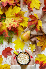 Women's hands holding a Cup of hot cocoa with marshmallow on a white wooden table with colorful autumn leaves. Fall concept. Selective focus