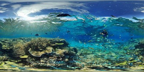 Dumbea Pass In A Coral Reef, New Caledonia