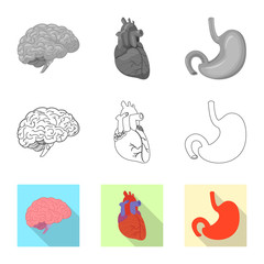 Vector illustration of body and human symbol. Collection of body and medical stock vector illustration.