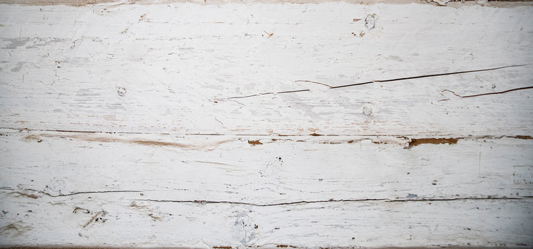 Wood texture. Abstract background