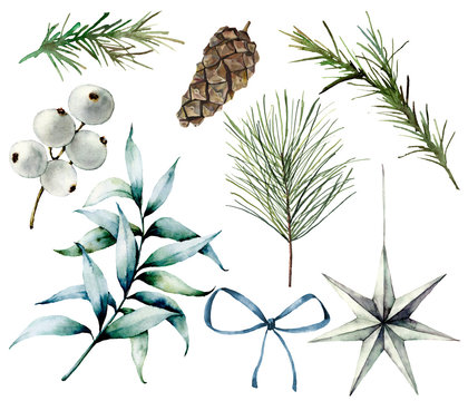 Watercolor Christmas plants and decor. Hand painted fir branches, eucalyptus leaves, white berries, star, fir cone, bow and rosemarin isolated on white background. Scandinavian illustrations.
