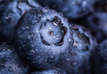 Fresh ripe blueberry with drops of dew. Berry background. Macro photo.